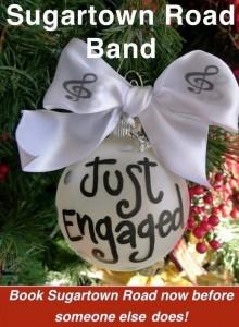 need a wedding band, book the most popular wedding band ni & ireland